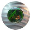 Fali akvárium - 56 x 18,7 cm
