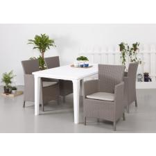 ALLIBERT Iowa műrattan kerti karfás szék, fotel cappuccino -22%!!! kerti bútor