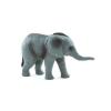 Afrikai elefánt kölyök M