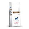 Royal Canin Diet Royal Canin Gastro Intestinal GI 25 2kg