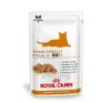 Royal Canin Diet Royal Canin Senior Consult Stage 2 Feline 12*100g macskaeledel