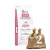 Brit Care Puppy & Junior Salmon & Potato 2*12kg