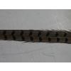Fácántoll 50 cm