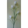 Padlóvázába !! 4 virágos tulipán 110 cm fehér
