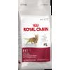 Royal Canin Fit 32  macskatáp 2×15kg Akció!