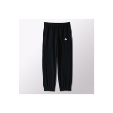 Adidas ESS PANT CH FT