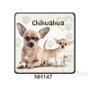 Chihuahua kutyás hűtőmágnes