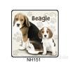 Beagle kutyás hűtőmágnes
