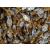 PaleoCentrum Kft. Kakaós krémmel töltött szaloncukor 500g Paleolit