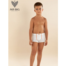 Mr Big Mr.Big 421 Junior fiú pamut boxer