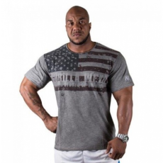 USA FLAG T-SHIRT (GREY) [XXL]