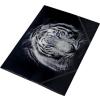 PANTA PLAST Gumis mappa, 15 mm, PP, A4, PANTA PLAST,