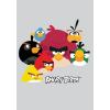 AngryBirds Füzet (88-32) A4 FRANCIAKOCKÁS Angry Birds Grey <20db/csom>