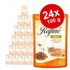 Animonda Rafiné megapack 24 x 100 g - Adult csirke, kacsa & tészta