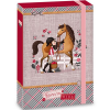 Ars Una Born To Ride füzetbox A/4-es méretben