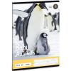 Ars Una Pingvin sima füzet A/5