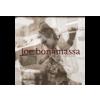 BERTUS HUNGARY KFT. Joe Bonamassa - Blues Deluxe (Vinyl LP (nagylemez))