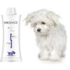 Biogance White Snow Shampoo