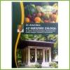 Biyovis Dr. Antal Géza - Az egészség záloga 1 db