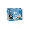 Brit Premium Cat tasakos Delicate Fillets in Gravy Family Plate 12x85g