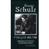 Bruno Schulz Fahajas boltok