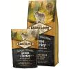 CarniLove Adult Large Salmon & Turkey 1,5 kg