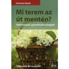 Christine Recht Mi terem az út mentén? természet- és alkalmazott tudomány
