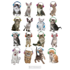 Cicák fejhallgatóval poszter