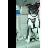 CLIX Car Safe hám M (LC02)