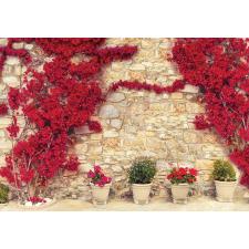 Consalnet Falra futott virágok 3581 több méretben, alapanyagban tapéta, díszléc és más dekoráció