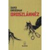 David Grossman OROSZLÁNMÉZ