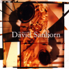 David Sanborn The Best Of David Sanborn CD