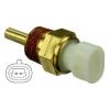DELPHI Érzékelő, kipufogógáz hőmérséklet DELPHI TS30008