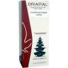 Drapal Drapal erdeifenyő-hajtás szirup 200 ml