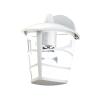 EGLO 93095 outdoor-WL 1-light E27 60W, downwards, white/clear 'ALORIA'
