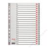 ESSELTE Regiszter, műanyag, A4, 1-20, ESSELTE, szürke (E100107)