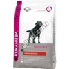 Eukanuba Adult Labrador Retriver CKN 12 kg