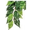 Exo-Terra Műnövény Ficus M Exo-terra pt3040