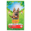 Friskies Dry Dog Active SMC 10 kg