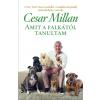 Gabo Könyvkiadó Cesar Millan - Melissa Jo Peltier: Amit a falkától tanultam