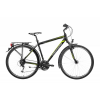 Gepida ALBOIN 200 PRO 28 2019 Trekking Kerékpár