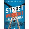 Gödrösi Ádám : Street workout haladóknak