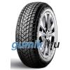 GT Radial Champiro Winterpro 2 ( 185/65 R14 86T )