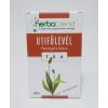 Herbatrend Szálas Dobozos Útifûlevél tea 40 g