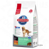 Hill's Sience Plan Hill's Canine Adult Perfect Weight Large Breed - 2 x 12 kg