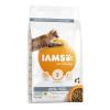 IAMS 10kg IAMS for Vitality Cat Adult Indoor csirke száraz macskatáp