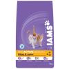 IAMS Cat Kitten & Junior Chicken 2,55Kg