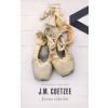 J. M. Coetzee Jézus iskolái