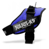 Julius-K9 IDC powerhám, kék 4-es (16IDC-B-4)