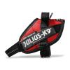 Julius-K9 IDC powerhám, piros Mini-Mini (16IDC-R-MM)